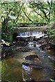 SX0557 : Unnamed stream south of Luxulyan by Tony Atkin