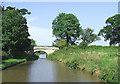SJ8459 : Gravel Pit Bridge, Macclesfield Canal, Cheshire by Roger  Kidd