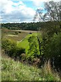 NS5726 : River Ayr Valley by Mary and Angus Hogg