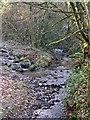 SX2265 : Stream near Blackwater by Tony Atkin