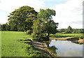 SJ9276 : Grazing Land and Pool, near Bollington, Cheshire by Roger  Kidd
