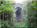 SU8991 : Loudwater: Magpie Lane railway bridge by Nigel Cox