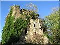 NS3054 : Kilbirnie House by wfmillar