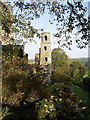 W6075 : Blarney Castle Tower by Andy Beecroft