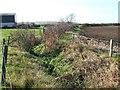 SP7623 : Stream south of Granborough looking downstream by Rob Farrow