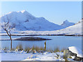 NC1809 : Looking West from Knockan Crag -  Winter! by sylvia duckworth