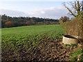 SX3389 : Field by the Tala Water valley by Derek Harper