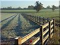 SU8370 : Farmland, Wokingham by Andrew Smith
