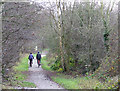 SO8793 : South Staffordshire Railway Walk at Wombourne by Roger  Kidd