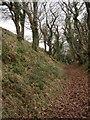 SS2411 : Penstowe Castle near Kilkhampton by John Duncan