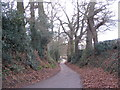SP3081 : Staircase Lane, towards Allesley by E Gammie