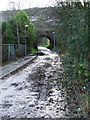 NS2475 : Branchton railway arch by Thomas Nugent