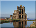NZ9011 : Whitby Abbey : Week 4