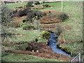 SH3439 : The incised meanders of Afon Rhyd-hir north of Melin Bodeilian by Eric Jones