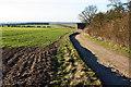 TL5451 : Rat Hall Farm track by Duncan Grey