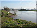 SO7816 : River Severn south of Calcott's Green by Pauline Eccles