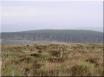 NX1578 : Benaw Hill by Billy McCrorie