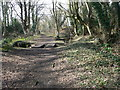 "Dist:0.9km<br/>Woodland in the western part of Connah's Quay, classed as ""ancient semi-natural woodland"", which have been here from at least the middle ages. They probably formed part of Ewloe Wood which Edward the Black Prince used for deer hunting in the 14th century."