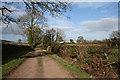 SJ5353 : Cholmondeley Estate track south of Bulkelehay by Espresso Addict