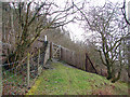 SN6878 : Vale of Rheidol Railway foot crossing by John Lucas