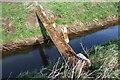 TL3977 : Bridge over Cranbrook Drain by Duncan Grey