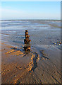 TQ2004 : Remains of a Groyne, Lancing Beach by Simon Carey