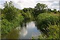 SP7029 : Padbury Brook by Shaun Ferguson
