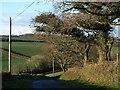 SX2685 : Lane to Tredundle by Derek Harper