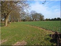 SU7989 : Farmland, Parmoor by Andrew Smith