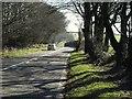 SX1687 : A395 at Tremblary by Derek Harper