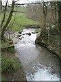 SX0983 : River Allen by Derek Harper