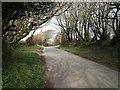 SX1084 : Lane north of Trefrew by Derek Harper