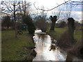 TL4751 : The River Granta at Stapleford by Keith Edkins