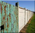 SE4104 : Darfield Cricket Club boundary fence : Week 13