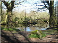 SW7629 : Former mill pond at Tregarne by Rod Allday