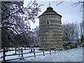 SU0725 : Faulston Dovecote, Bishopstone : Week 14