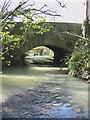 SX8674 : Claypit Road Bridge : Week 14