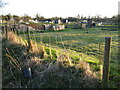 SP8207 : Clanking: Kimble Allotments by Nigel Cox