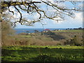 SW7730 : View across fields to West Bay from the drive to Penwarne House by Rod Allday
