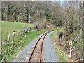 SN6678 : Vale of Rheidol Railway near Troed-rhiw-felen by John Lucas