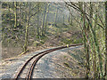 SN6878 : Vale of Rheidol Railway in Coed Lluest by John Lucas