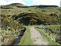 NS2373 : Cauldron Hill by Thomas Nugent
