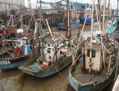 TF6120 : Fishing boats, King's Lynn by Bob Jones