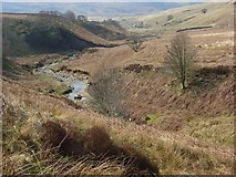 NY5953 : Old Water, Geltsdale by Andrew Smith