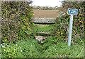 SW4525 : Stone stile, Cornish-style by Pauline E