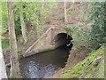 SJ6834 : River Tern flowing under Shropshire Union Canal by John M