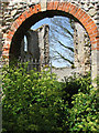 TG1642 : The ruins of St Mary's Priory by Evelyn Simak