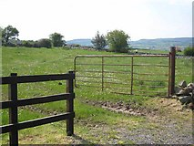 G7908 : Field at Ballymullanny by Oliver Dixon