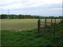 N9824 : Field Near Huttonread Stud by Ian Paterson