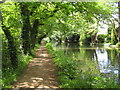 TQ0561 : River Wey Navigation near Byfleet by Nigel Cox: Week 20